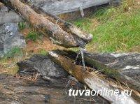 Аржаан-Уру после прошлогоднего локдауна в этом году открыт для посетителей