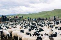 Правительство Тувы направило на реализацию проекта «Новая жизнь» более 27 млн. рублей