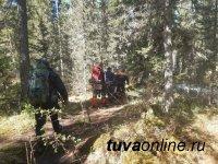 В парке «Ергаки» медведь напал на туристов, погиб подросток