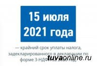По декларациям 3-НДФЛ в бюджет Тувы до 15 июля должны поступить от граждан 42 млн. рублей