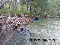 Водолазы тувинского спасательного отряда в районе села Барлык ведут поиски утонувшей девочки