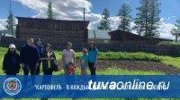 Проект «Картофель – в каждый дом» охватил 26 098 малоимущих семей Тувы