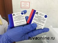 В Туву поступила очередная партия вакцин Гам-Ковид-Вак