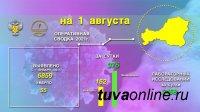 Эпидситуация по коронавирусу в Туве  на 1 августа