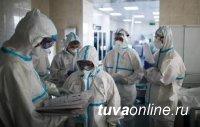 В Туве за прошедшие сутки выявлено 117 новых случаев заболевания COVID-19