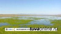 Вопрос: Мелеет ли озеро Чедер?