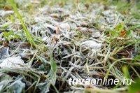 В Туве с 3 по 6 сентября ожидаются заморозки