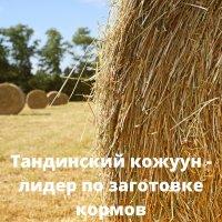Тандинский кожуун стал лидером по заготовке кормов - 132% от плана