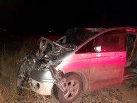 В Туве при столкновении автомобиля с лошадью погибли два человека